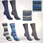 Regia Best of Colors Sockenwolle 4-fach